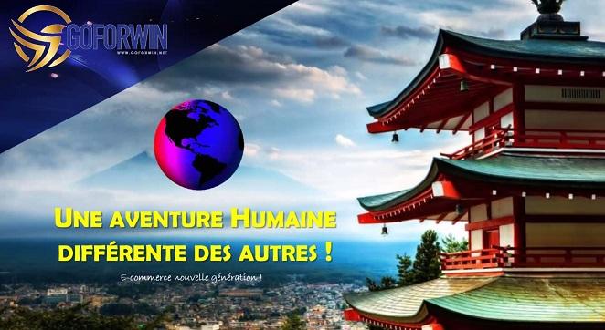 Goforwin-entreprise-française
