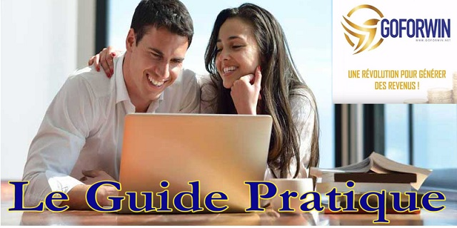 Goforwin-Guide-Pratique-wp